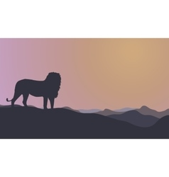 Landscape lion silhouettes at morning vector