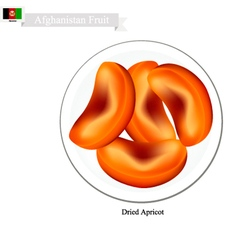 Dried Apricot A Popular Fruit in Afghanistan vector image vector image