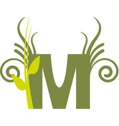 Nature m vector