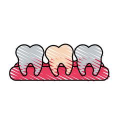 Color crayon stripe cartoon set tooth in gum vector