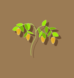 Paper sticker on background of plant capsicum vector