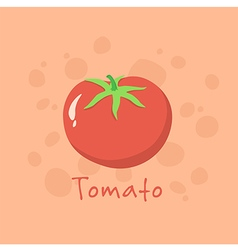 Tomato Vegetable vector image vector image