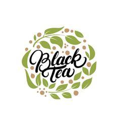 black tea hand written lettering logo label badge vector image vector image