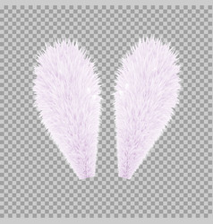 realistic rabbit bunny easter ears vector image vector image