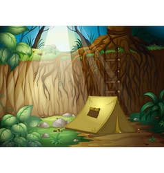 Camping in the jungle vector