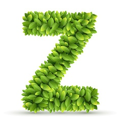 Letter z alphabet of green leaves vector