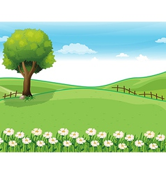 A hilltop with a garden and a giant tree vector image