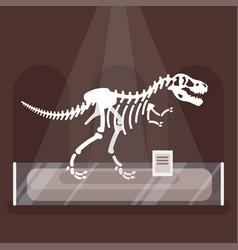 Dinosaur skeleton in museum vector