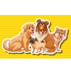 Four different type of dogs vector image