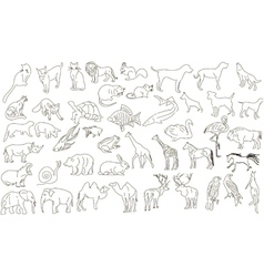 Rough animals vector image vector image
