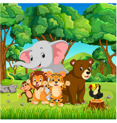 wild animals in the forest vector image