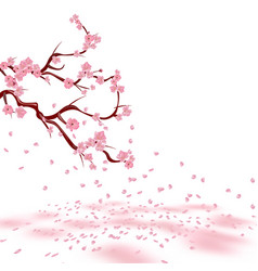 Branches of a faded pink cherry sakura the vector