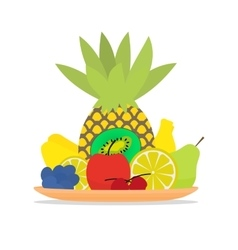 Colorful fruit on a plate vector