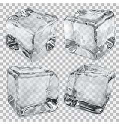Transparent ice cubes in gray colors vector image