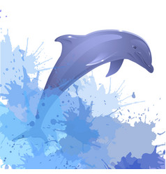 With dolphin and watercolor splashes for your vector