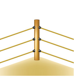 Boxing ring with brown ropes vector