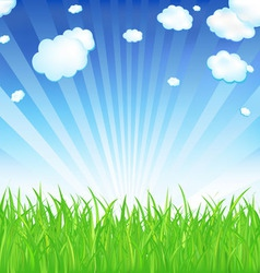 fresh spring grass vector image vector image