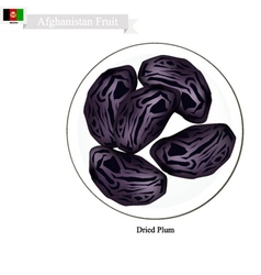 Dried plum a popular fruit in afghanistan vector