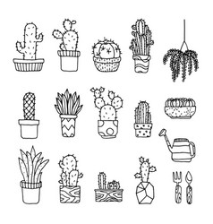 Set of fancy cactus plants vector