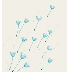 dandelion fluff vector image