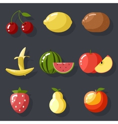 Fresh tasty fruit set apple cherry watermelon kiwi vector image