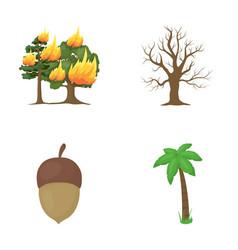 burning tree palm acorn dry treeforest set vector image