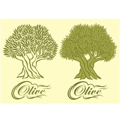 Pattern with an olive tree for packaging vector