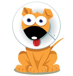 Funny dog with elizabethan collar vector