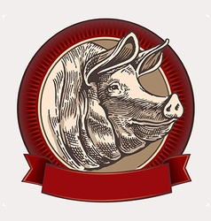 Graphical pig vector image vector image