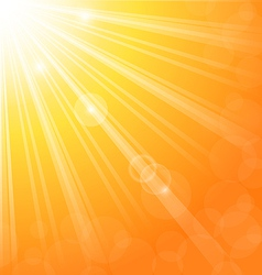 Abstract background with sun light rays vector image