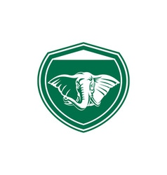 Elephant head tusk front shield vector