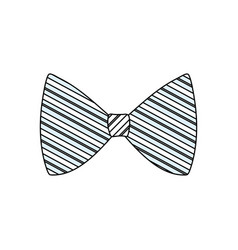 fashion bow tie vector image