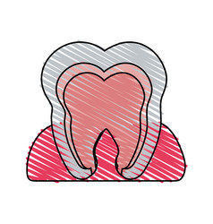 Color crayon stripe cartoon internal tooth view vector
