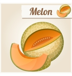 Melon detailed icon vector