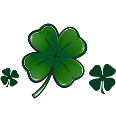 Four leaf clover isolated on white vector