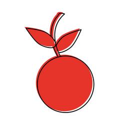 Cherry fruit icon image vector