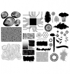 Collection vector