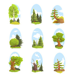 Natural landscape with various trees set vector