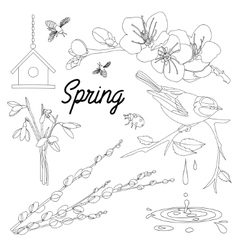 Spring Elements background vector image vector image