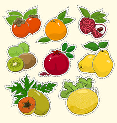 Set of tropical fruit stickers vector
