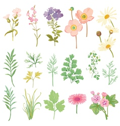Set of Flowers and Herbs - hand drawn watercolor vector image