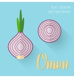 Onion in a flat style with an oblique bland shadow vector