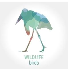 Wildlife banner - birds marabou vector image
