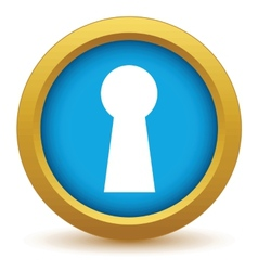 Gold keyhole icon vector image