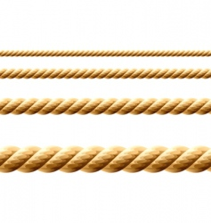 seamless rope vector image vector image