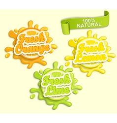 Set of Lemon orange lime juece labels splash vector image vector image