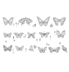 Set with different butterflies black and white vector