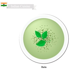 Raita or indian creamy cucumber yogurt dip vector