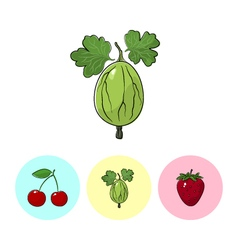 Fruit icons gooseberry cherry strawberry vector