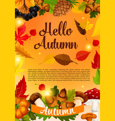 Hello autumn poster template of fall season leaf vector